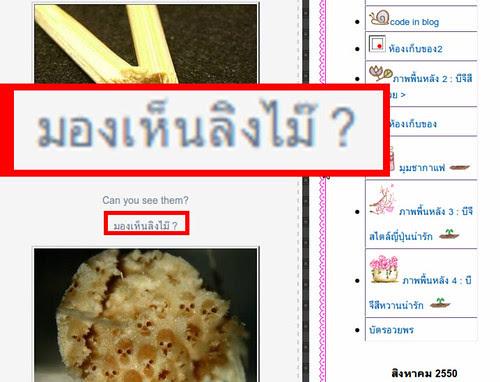 泰國猴子臉