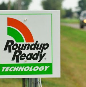 Lethality of Roundup 'Weedkiller' Extends Beyond Plants To Humans, Study Suggests