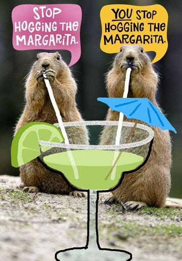 Hog the Margarita Funny Birthday Card   Greeting Cards