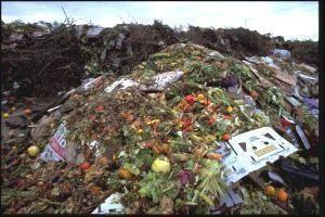 América Latina desperdiça até 348 mil toneladas de alimentos por dia
