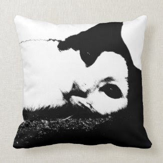 Here's Looking At You Cat American MoJo Pillows