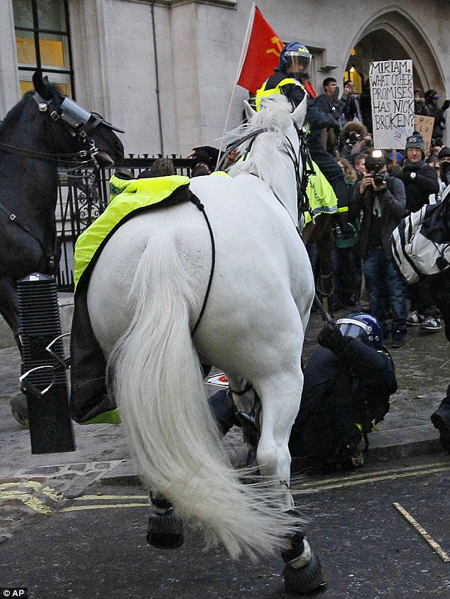 Unseated: A police rider lies on the ground after he was pulled off his horse by protesters