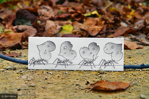 5191268313 106df73556 in Incredibly Creative Pencil Drawings vs Photography