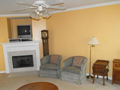 A Shade of Yellow Tan Paint on Our Living Room Walls