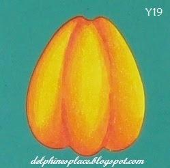 Pumpkin D c