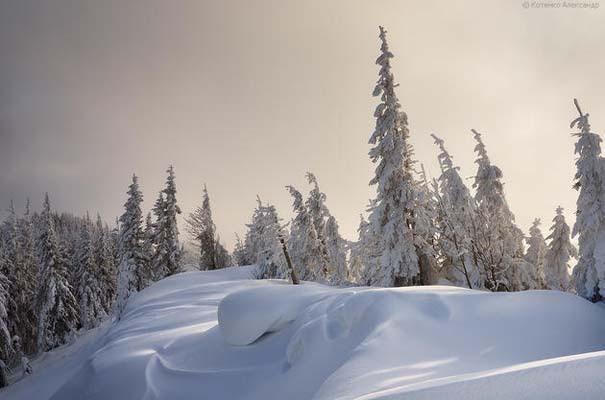 Χειμώνας στα Καρπάθια Όρη (12)