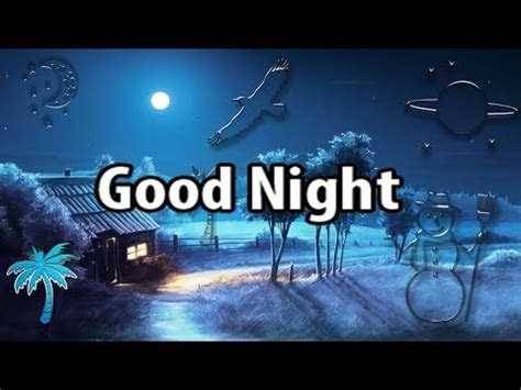 good night whatsapp status video tictic mon youtube