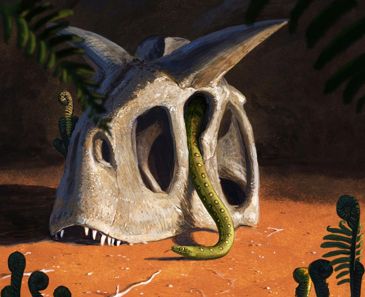 All Living Snakes Evolved From a Few Survivors of Asteroid That Killed the Dinosaurs
