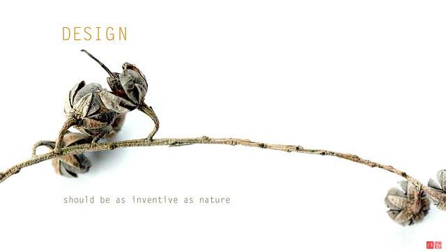 design-nature_2560x1440