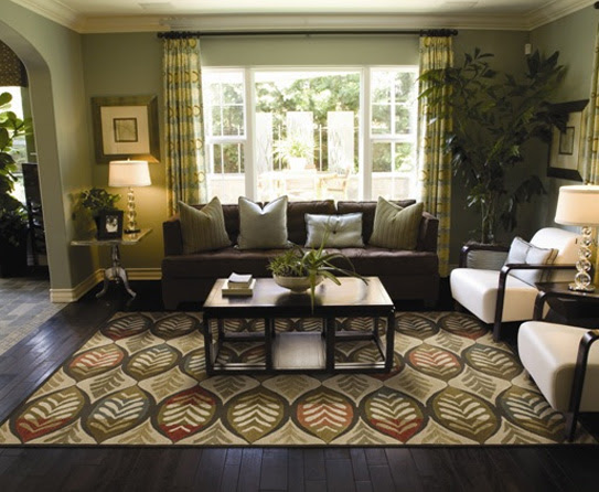 Compelling Style Decor with Transitional Rugs