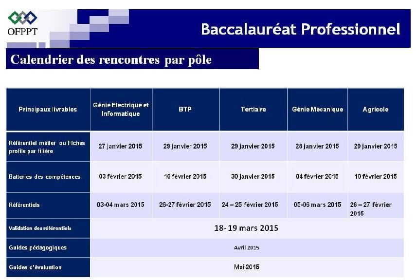 شعب البكالوريا المهنية بالمغرب