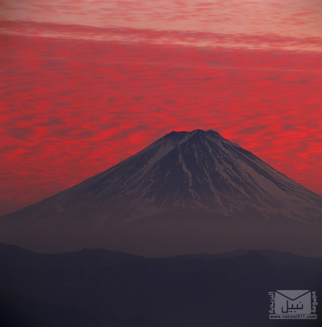 YukioOhyama4