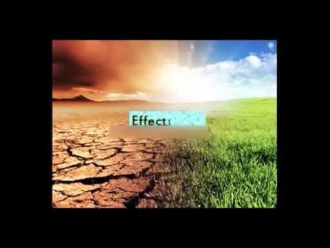 Global Warming Effect in Nature | Global warming | Weather Climate