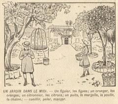 jardin midi