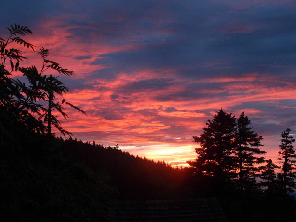 Good Evening Mt Leconte High On Leconte