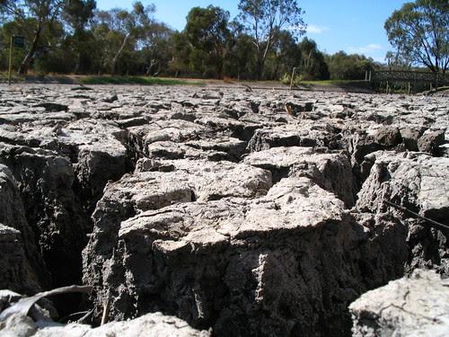 Dry lake mud