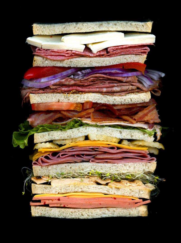 high quality sandwich scans by jon chonko scanwiches (3)