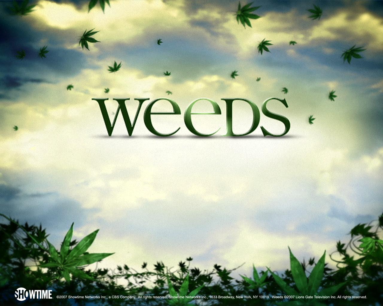 weeds - weeds Wallpaper
