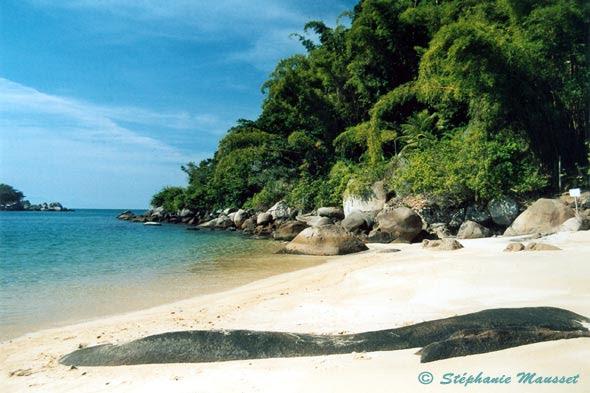 """Résultat de recherche d'images pour """"plage brésil noir et blanc"""""""