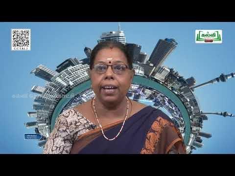 10th Social Science  Globalization And Trade Unit 2  Part 2  English Medium  Kalvi TV