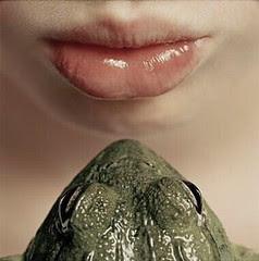 kissing frog - tim flach