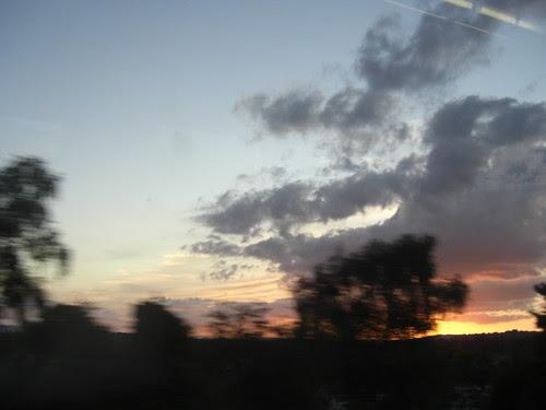 Cloud-bush7
