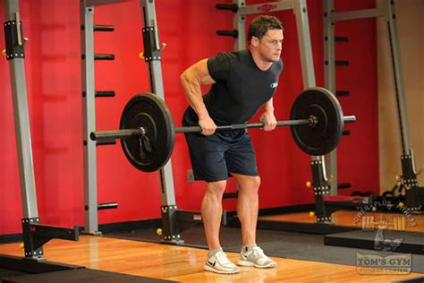 bent  barbell row alternative   seated cable