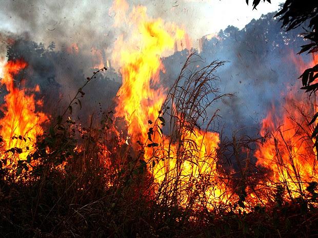 Mirador (MA) é 2ª cidade do país com mais focos de incêndio em 2015 (Foto: Douglas Júnior / O Estado)