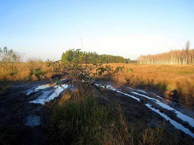 West Miramar WCA damage 20120128