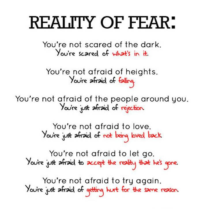 Yoddler Reality Of Fear Youre Not Scared Of The Dark Youre