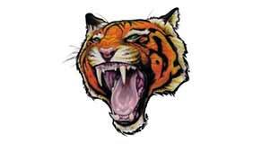 Significado Tatuaje Tigre 1 Tatuarteorg