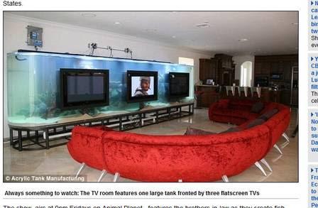 Um aquário gigante também foi instalado na 'saleta' de TV do astro do futebol americano