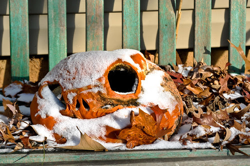 time to toss the pumpkin