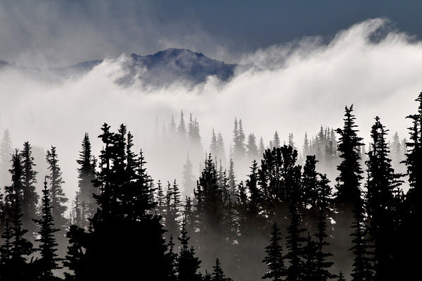 ...to feel the fog in my throat, the mist in my face... Robert Browning