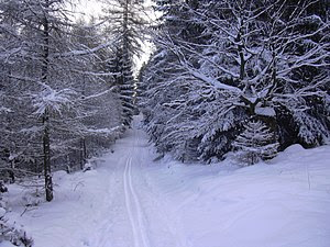 Cross-country skiing trail on the northern slo...