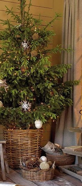 Christmas Tree in a Basket, Love this!