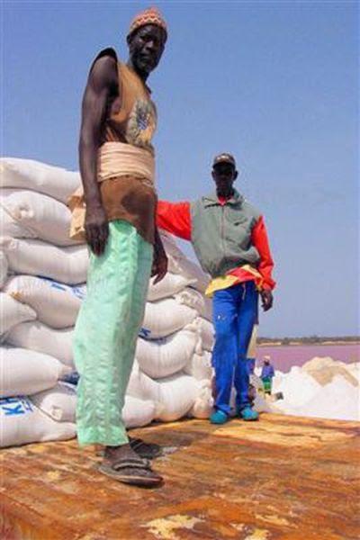 Ροζ λίμνη στη Σενεγάλη (18)