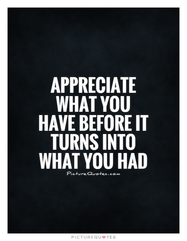 Appreciate What You Have Before It Turns Into What You Had Picture