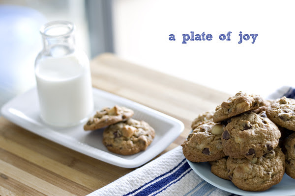 choc chip macadamia cookie 13