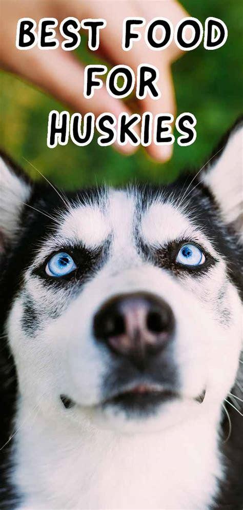 dog food  huskies   handle  picky eater
