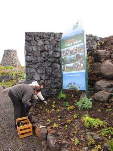 Foto 10-Campo de Educação Ambiental do Cabeço da Lenha-12.02.12(RQ)