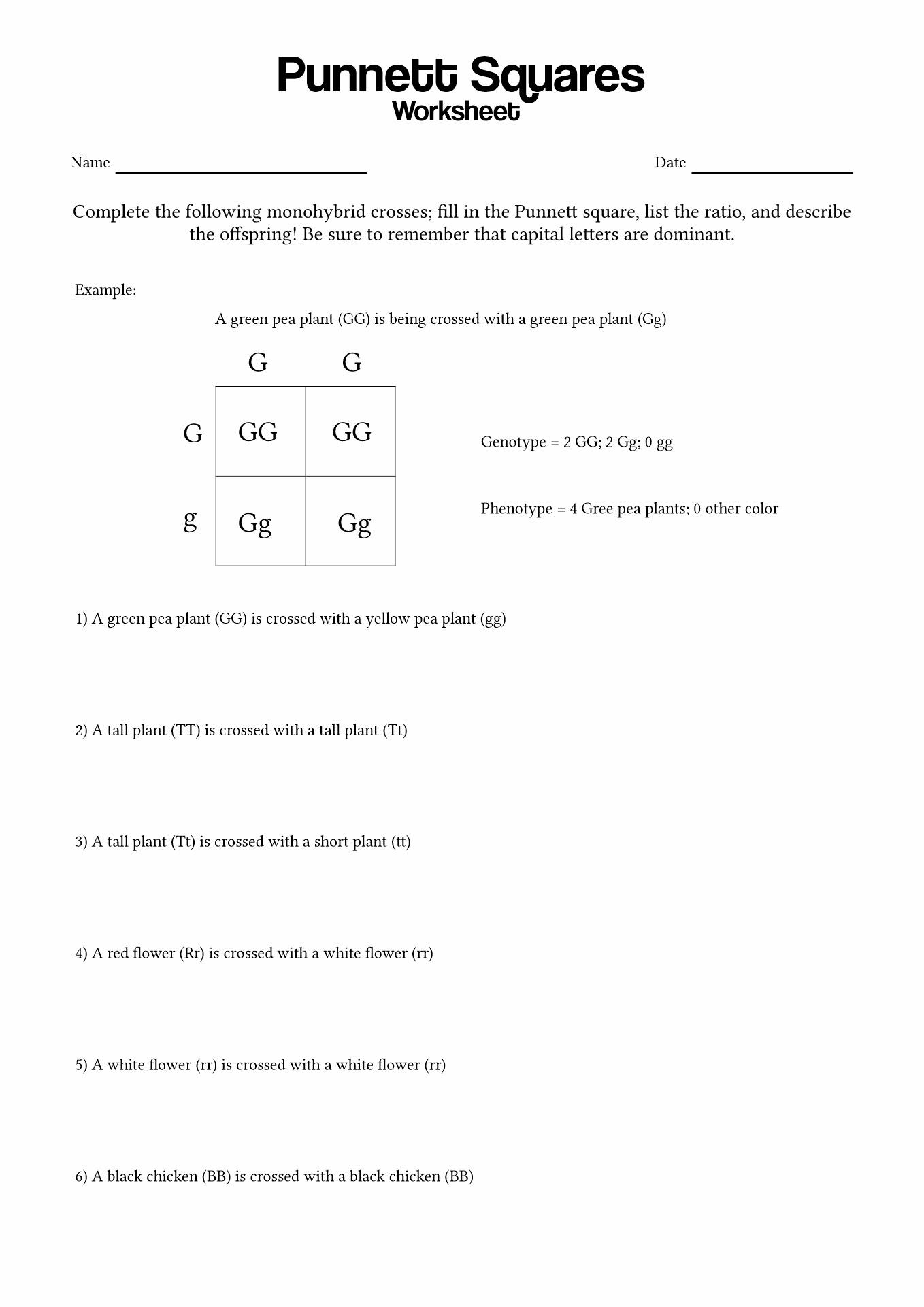 33 Punnett Square Worksheet 1 Answers - Free Worksheet ...