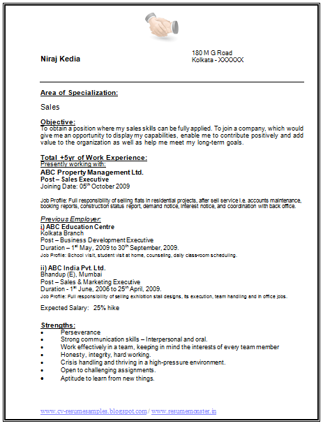 show me a basic resume  best resume examples