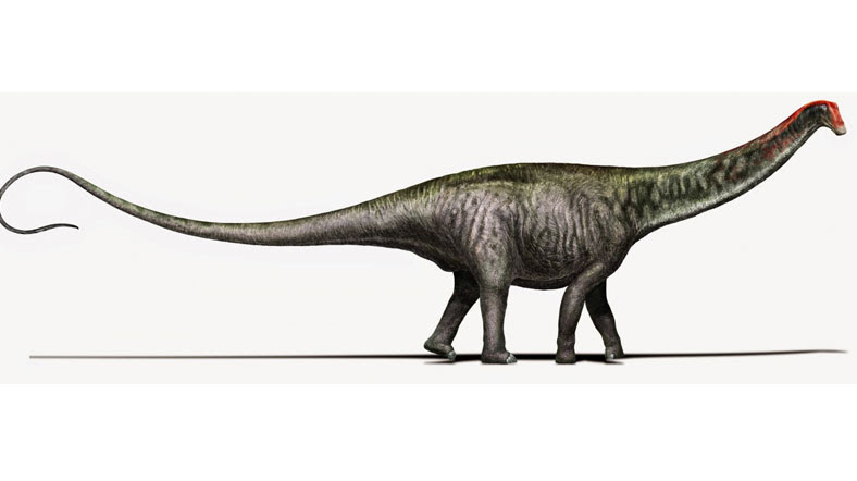 Dev Dinozor 100 Yıl Sonra Ismine Kavuştu Al Jazeera Turk