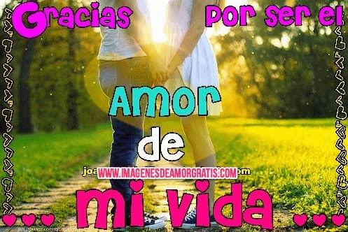 Gracias Mi Amor 25071 Loadtve