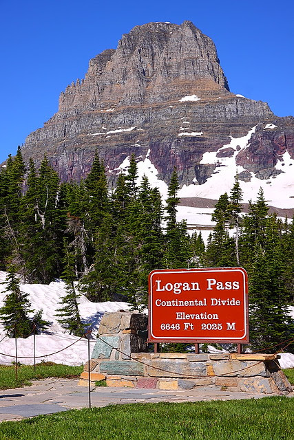 IMG_3212 Logan Pass, Glacier National Park
