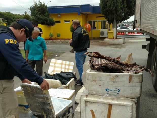 PRF apreende 350 quilos de carne estragada na rodovia Fernão Dias (Foto: Divulgação/PRF)