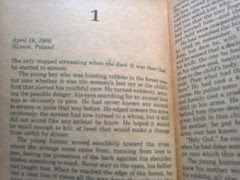 Chapter One, Kane and Abel by Jeffrey Archer