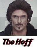the hoff Pictures, Images and Photos