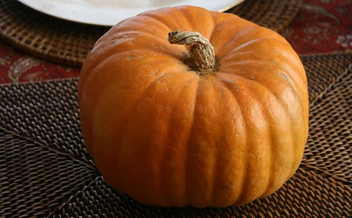 orange jarrahdale pumpkin
